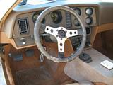 Bricklin Interior