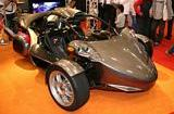 Campagna T Rex Front