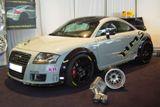 Racing Audi TT