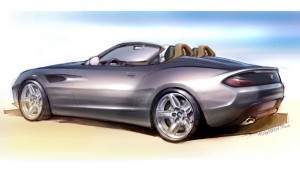 BMW Zagato Roadster (10)