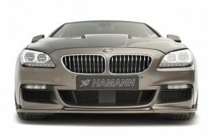 HAMANN BMW 6 Gran Coupe M (3)
