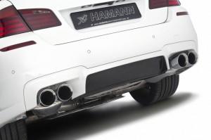 HAMANN BMW M5  (13)
