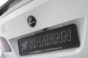 HAMANN BMW M5  (15)