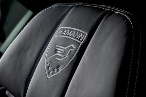 HAMANN BMW M5  (20)