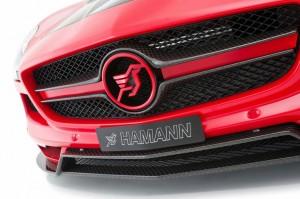 HAMANN Hawk AMG SLS Roadster (10)