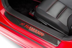 HAMANN Hawk AMG SLS Roadster (11)