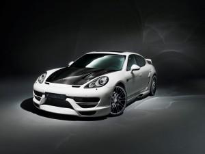 HAMANN Porsche Panamera  (8)