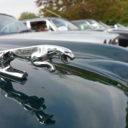Jaguar Classic Kicks Off A Summer Of Celebrations At Royal Windsor Jaguar Festival